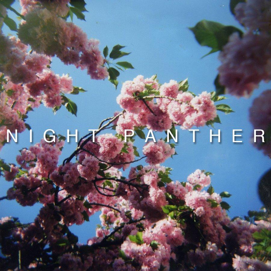 Night Panter
