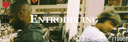 dj shadow, entroducing