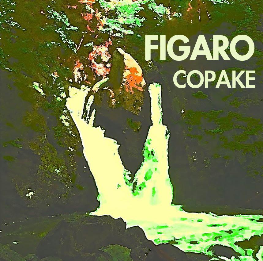 figaro, moving slowly, découverte soundcloud
